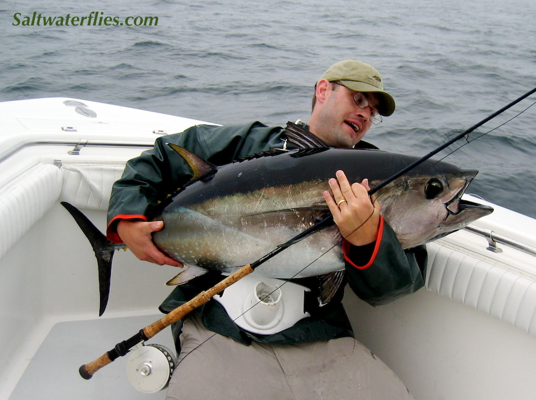 Bluefin Tuna on fly