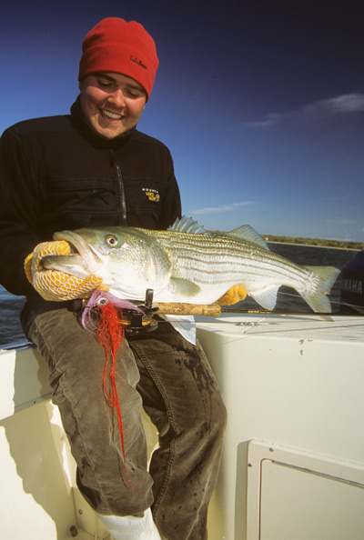 John Rapone with a beautiful striper taken on a squid fly