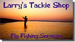Martha's Vineyard fishing spots, derby info and more!