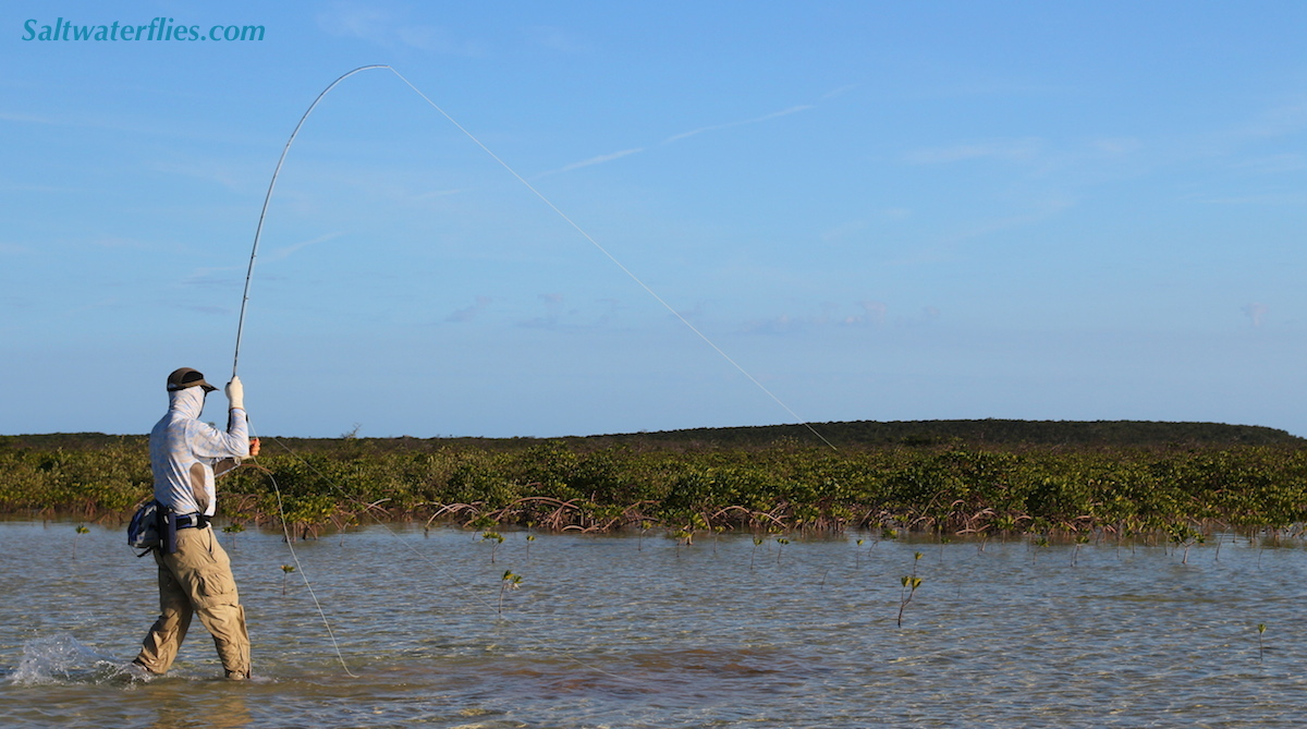 stalking bonefish on fly